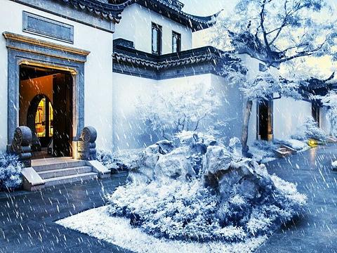 长青公园旅游景点图片