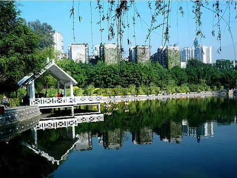 竹湖园公园旅游景点图片