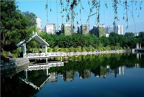 竹湖园公园的图片
