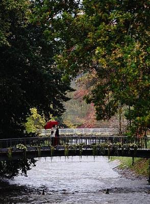 巴登旅游景点图片