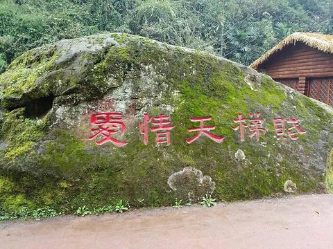 爱情天梯旅游景点图片