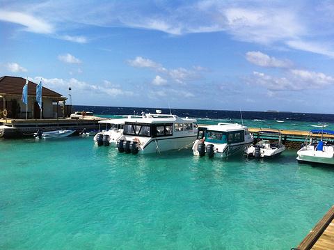 鲁滨逊岛旅游景点图片