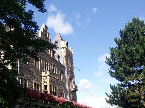 克洛普城堡旅游景点图片