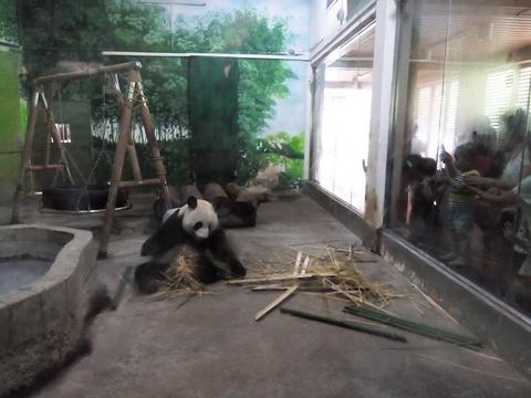 柳州动物园旅游景点图片