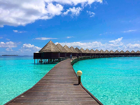 蓝色美人蕉岛旅游景点图片
