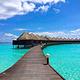 蓝色美人蕉岛