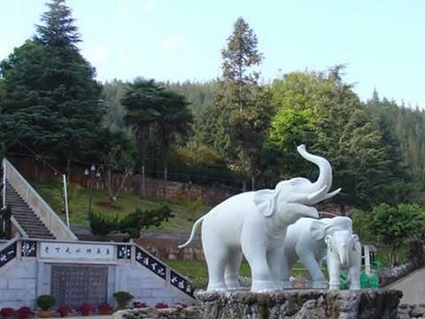 象鼻山温泉森林公园旅游景点图片