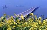 太湖湾旅游度假区