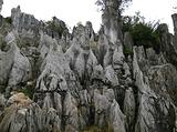 华蓥山石林