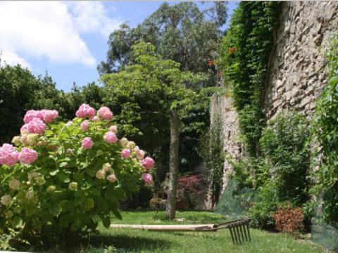 尼斯植物园旅游景点图片