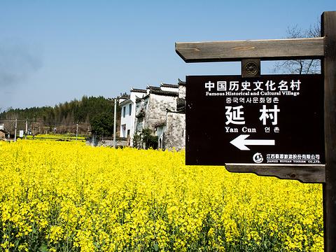 延村旅游景点图片