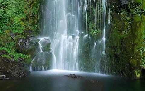 桃山瀑布的图片