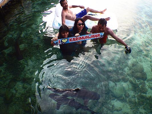 卡里摩爪哇群岛旅游景点图片