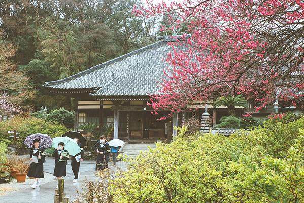 下田市旅游景点图片