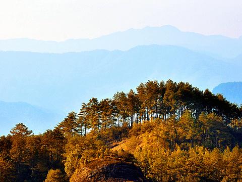 武夷山森林公园旅游景点图片