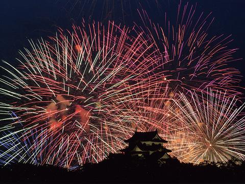 彦根·北琵琶湖花火大会旅游景点图片