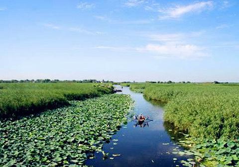 沧州旅游图片