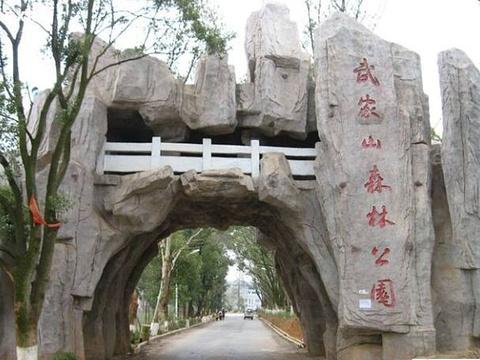 武家山森林公园旅游景点图片