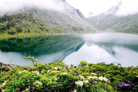 仁措湖的图片