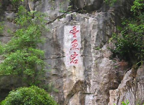 丰鱼岩的图片