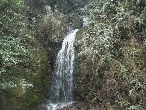 凤尾瀑的图片