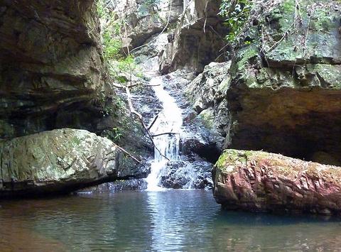 大桂山国家森林公园