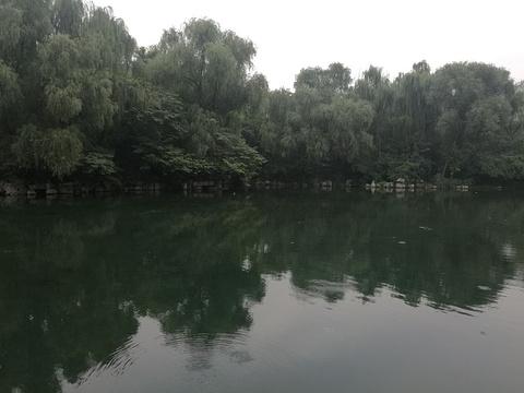 万泉湖旅游景点图片