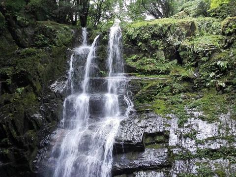 阳坝自然风景区旅游景点图片