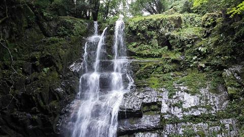 阳坝自然风景区的图片