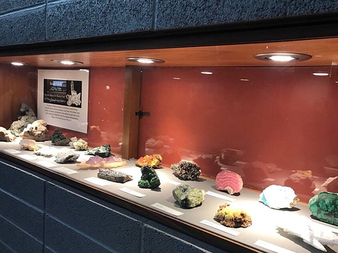Earth Sciences Museum旅游景点图片