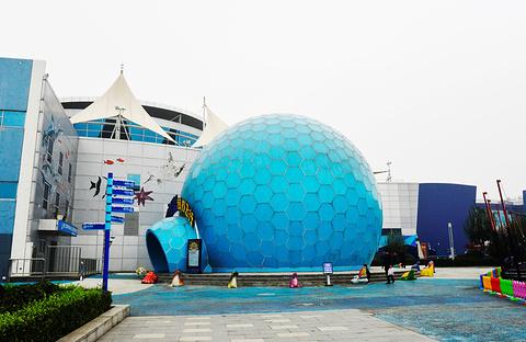 曲江海洋公园3D错觉体验馆