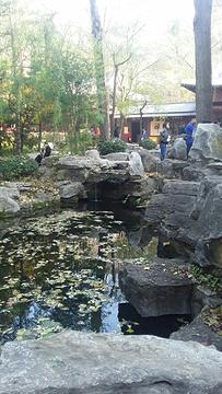 圣水泉的图片