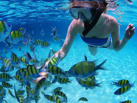 皮皮岛潜水旅游景点图片