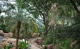 灵珠山植物园