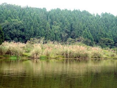 五凤山森林公园旅游景点图片