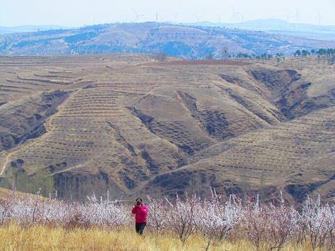 平顶山自然保护区旅游景点图片