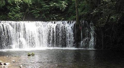 吊水湖森林生态风景区的图片
