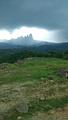 甘什岭铁棱自然保护区
