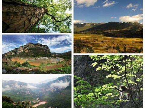 尼珠河大峡谷旅游景点图片