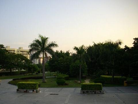 坪山公园旅游景点图片