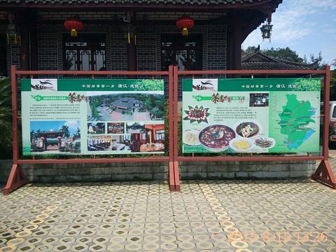 茶马世家旅游景点图片