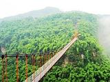 川西竹海峡谷自然景区(金鸡谷)