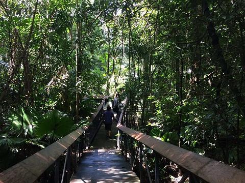 莫尔兹比港自然公园旅游景点图片
