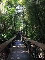 莫尔兹比港自然公园