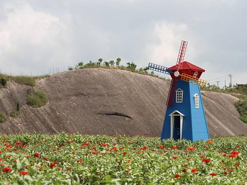 石牛寨花海旅游景点图片