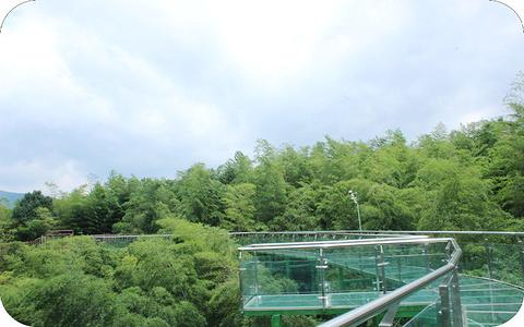 竹尖玻璃栈道