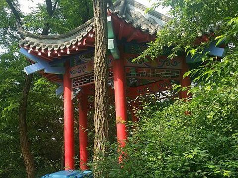 元宝山公园旅游景点图片