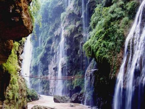 天星国家森林公园旅游景点图片