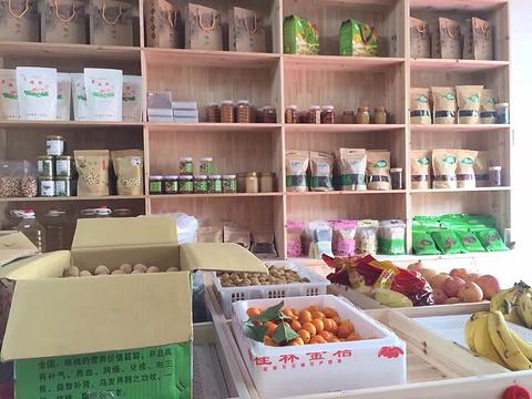 小马特产馆旅游景点图片