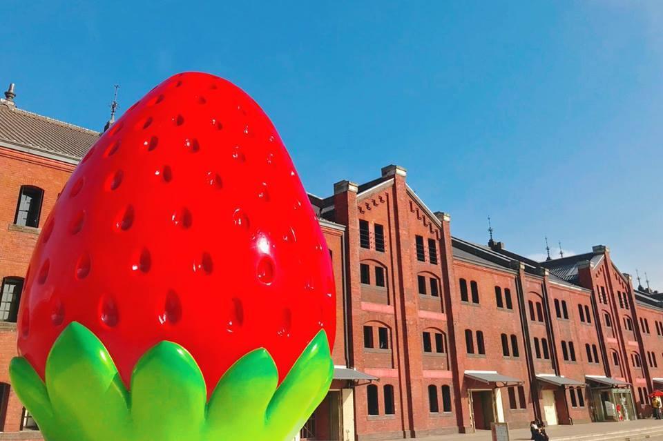 横滨草莓节